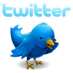 an image of twitter bird