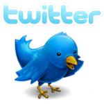 an image of twitter bird